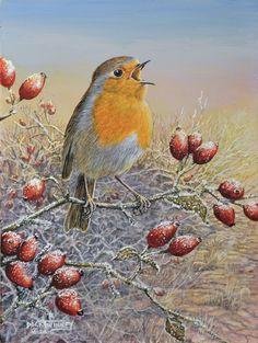 The Art of Dick Twinney - Cornish Wildlife Artist