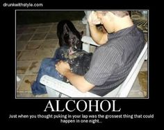 Dog Gross Funny Alcohol Passed Out Puke