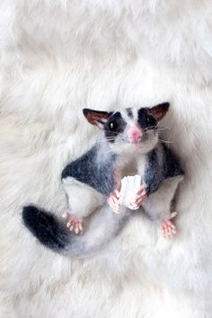 Animals Discover Needle felted animal Felted Sugar Glider Flying by AbsurdGiraffe Cute Funny Animals Funny Animal Pictures Cute Baby Animals Needle Felted Animals Felt Animals Animals And Pets Sugar Glider Baby Sugar Gliders Sugar Bears Cute Funny Animals, Funny Animal Pictures, Cute Baby Animals, Needle Felted Animals, Felt Animals, Animals And Pets, Sugar Glider Baby, Sugar Gliders, Sugar Bears