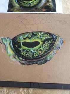 Beginning of the eye
