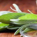 Salvia Chiamata Erba Miracolosa Ma Scopriamo Per Quale Motivo Salvia, Protein Diets, Tips Belleza, Natural Solutions, Kefir, Health Fitness, Vegetables, Nature, Muffin