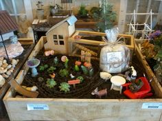 Arlena Schott of Garden Wise Living TV shares one of her Jeremie Corp Miniature Gardens fed Authentic Haven Brand Natural Brew