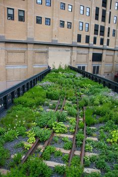 New Pictures Rooftop Garden public Style Rooftop gardening is nothing new. City dwellers are actually tucking plants on roofs and fire escape Green Architecture, Landscape Architecture, Classical Architecture, Ancient Architecture, Sustainable Architecture, Urban Landscape, Landscape Design, New York High Line, Urban Nature