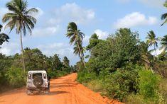 Itinéraire de notre Road-trip Afrique du Sud – Mozambique Safari, Road Trip, Station Balnéaire, Africa, Country Roads, Photography, Travel, Life, Coups