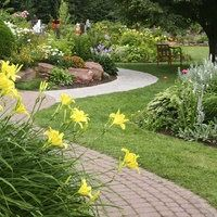 Get the best lawn care service in Aurora. For More information visit: http://www.bestyard.com/great-looking-lawns/
