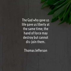 55 Famous and sayings by Thomas Jefferson. Here are the best Thomas Jefferson quotes to read that will surely inspire you. Best Independence Day Quotes, Woman Quotes, Life Quotes, Thomas Jefferson Quotes, Independent Quotes, July Quotes, Freedom Quotes, Do What Is Right, Short Inspirational Quotes