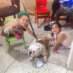 """""""Aquí posando con mis bellas amiguitas!!!  Contanza y  Oriana quienes me recibieron en du ✨ @silviasilva"""" Photo taken by @capo.bulldogvzla on Instagram, pinned via the InstaPin iOS App! http://www.instapinapp.com (04/09/2015)"""