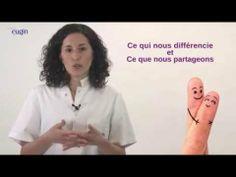Aspects émotionnels en Procréation Médicalement Assistée.