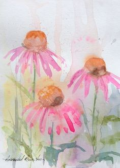 Signed Original Watercolour Painting- Cone Flowers by Annabel Burton