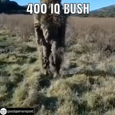 Fortnite Bush IRL Real life camouflage bush as seen by many campers in Fortnite Visit our link to get discounted VBUCKS! Clean Funny Memes, Funny Gaming Memes, Funny Video Memes, Funny Games, Stupid Funny, Video Games Funny, Army Jokes, Military Jokes, Army Humor