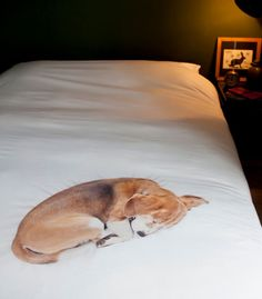 Bed set - Dog Designed by: Snurk, Holland (Little Baby Company)
