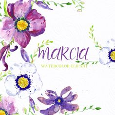 Purple Anemones watercolor clipart, clipart hand drawn. Marcia. Wedding invitations, purple petals and  black colour contrasts flowers