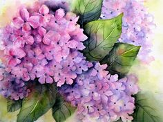 """Pink Purple Hydrangea 