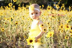 Sunflower field with toddler.....cute!