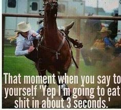 Or my horse could just give up and fall the fuck over on me LOL Rodeo Quotes, Equestrian Quotes, Equestrian Problems, Horse Quotes, Horse Sayings, Farm Quotes, Cowgirl And Horse, My Horse, Horse Love