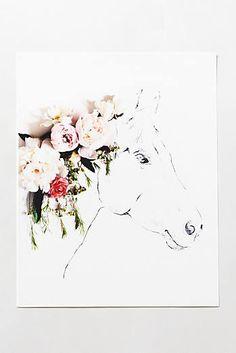 Uno The Horse Print