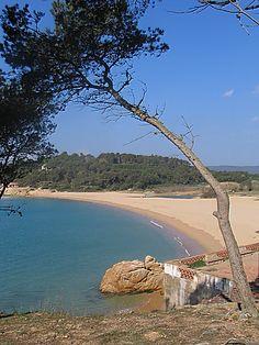 Platja del Castell ( una de las pocas playas vírgenes en la Costa Brava)