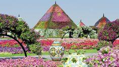 Miracle Garden - Dubai / Émirats Arabes Unis - 21e s.