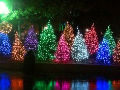 dollywood christmas - Google Search | Dollywood | Pinterest ...