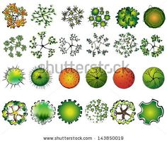 A set of colored treetop symbols, for architectural or landscape design - stock vector