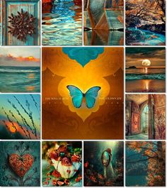 Massage Therapy Las Vegas Knots Unwound -www. Colour Schemes, Color Combos, Color Patterns, Color Collage, Mood Colors, Beautiful Collage, Orange And Turquoise, Jolie Photo, Colour Board