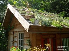 hmmm...wonder if it is worth it with such short summer? looks amazing.. I want a new gardening shed :)