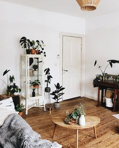 36 DIY Plant Stand Ideas There are two type of interior decorators; Living Room Decor, Living Spaces, Bedroom Decor, Small Home Offices, Cottage Style Homes, Decoration, Boho, Interior Inspiration, Sweet Home