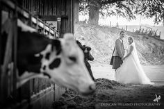 Farm Wedding | If you are getting married on a dairy farm then include it in your wedding photos - it is what it is!