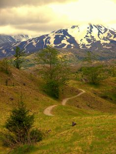 Hiking Trail - Mount St. Helens National Volcanic Park, Washington
