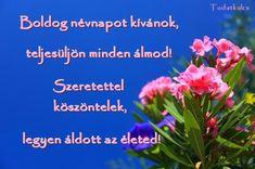 2015 szeptember – TUDATKULCS Happy, Plants, Picasa, Ser Feliz, Plant, Planets, Being Happy