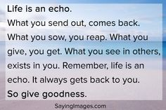 Life is an echo, so give goodness