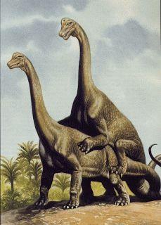 Dinosaur Sex ~ Hudson Valley Geologist