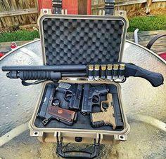 guns & puppies : Photo
