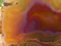 TCR Laguna Agate Jasper lapidary Cabbing Slab Extraordinary Colors 148 Grams   eBay