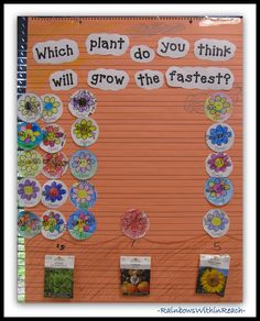 113 Graphs (Diagrams and Charts) from Early Childhood Classrooms large group (my own pin) Spring Activities, Classroom Activities, Number Activities, Plant Lessons, Preschool Garden, Preschool Ideas, Tree Study, Kindergarten Science, Kindergarten Pictures