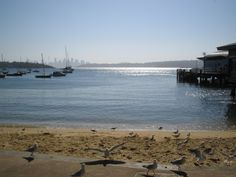 Watson's Bay - Sydney Australia.  Best place to be on a relaxing Sunday afternoon for fish and chips.