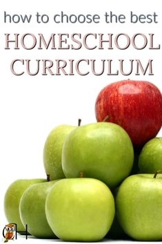choose the best homeschool curriculum for your family Kindergarten Homeschool Curriculum, High School Curriculum, Homeschool Curriculum Reviews, Homeschooling, Middle School Counseling, Planer, Simple, School Tips, School Stuff