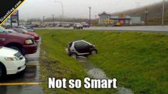 Not So Smart | Click the link to view full image and description : )