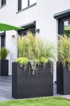 Modern Garden Design, Contemporary Garden, Modern Design, Landscape Design, Small Patio Ideas On A Budget, Garden Solutions, Patio Layout, Terrace Garden, Easy Garden
