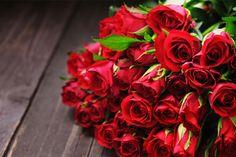 Florile pentru Mărţişor şi 8 Martie, în pericol din cauza vremii Martie, Desktop, Rose, Flowers, Plant, Desk, Roses, Royal Icing Flowers, Flower