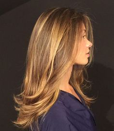 Elegant Light Brown Streaks