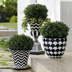 Our hand-painted Lulu Planter replicates the look of ceramic, but durable fiberglass construction me Painted Flower Pots, Painted Pots, Hand Painted, Painted Pebbles, Garden Spaces, Garden Pots, Rosen Arrangements, Black Planters, Cheap Planters