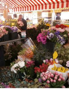 1 bed Apartment in Vieux Nice. A display  of flowers and blossoms at Cours Saleya. We have special rates. If you'd like to stay, send email to: ianrob222@gmail.com to request dates of availability and more. (Click and drag my email address to a ready email).