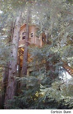 How to Live in a Tree House, From a Guy Who Did It for Five Years - Asylum.com