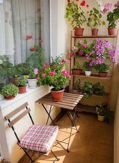 Small Balcony Design, Small Balcony Garden, Small Balcony Decor, Balcony Plants, Outdoor Balcony, Small Patio, Small Balconies, Balcony Ideas, Patio Ideas