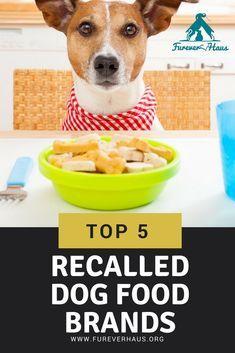 Top 5 Brand Dog Food Top 5 Brand Dog Foods Recalled Dog Doglife