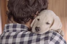 This Devastating New Budweiser PSA Will Turn You Into A Puddle Of Mush
