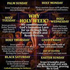 "HOLY WEEK: WHY IS IT CALLED HOLY? Dear brethren in Christ, here you have an infographic which explains why the most important week in the liturgical year is called ""holy"". It is called … Catholic Lent, Catholic Religion, Catholic Prayers, Roman Catholic, Catholic Easter, Catholic Doctrine, Orthodox Easter, Catholic Answers, Catholic Quotes"