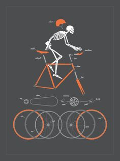 "Looks like The National Poster Retrospecticus just commissioned a new art print by Doug Harry. ""Bicycle Anatomy"" is an 18"" x 24"" screenprint for $40. Visit thei"
