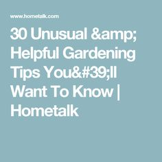 30 Unusual & Helpful Gardening Tips You'll Want To Know | Hometalk